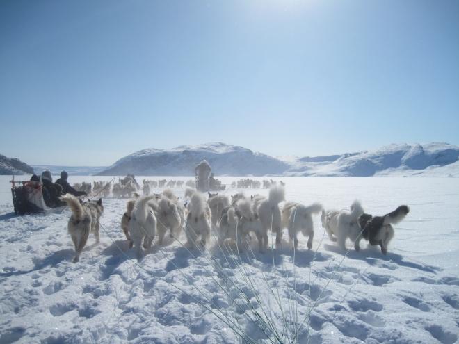 Grönland 4.2010 helena 409.JPG