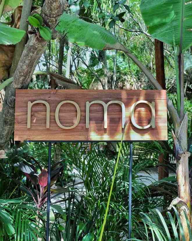 noma-restaurant-pop-up-tulum-mexico-chef-rene-redzepi-the-better-places