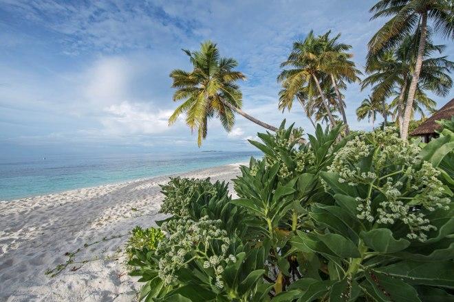 Thebetterplaces_maldives_stopoverreisen_travelagent.jpg_paradise_island.jpg