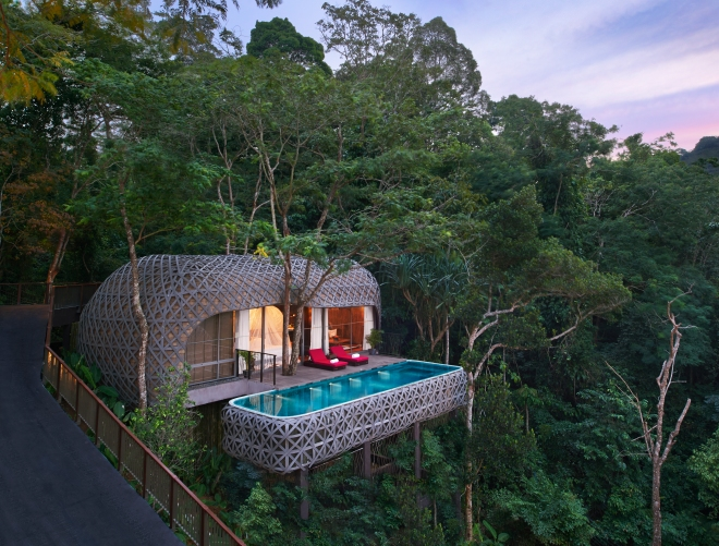 Birds Nest Thailand Hotel Review Nature Design Hotel Tree House Wooden The Better Places Travel Blog Germany Design Interior